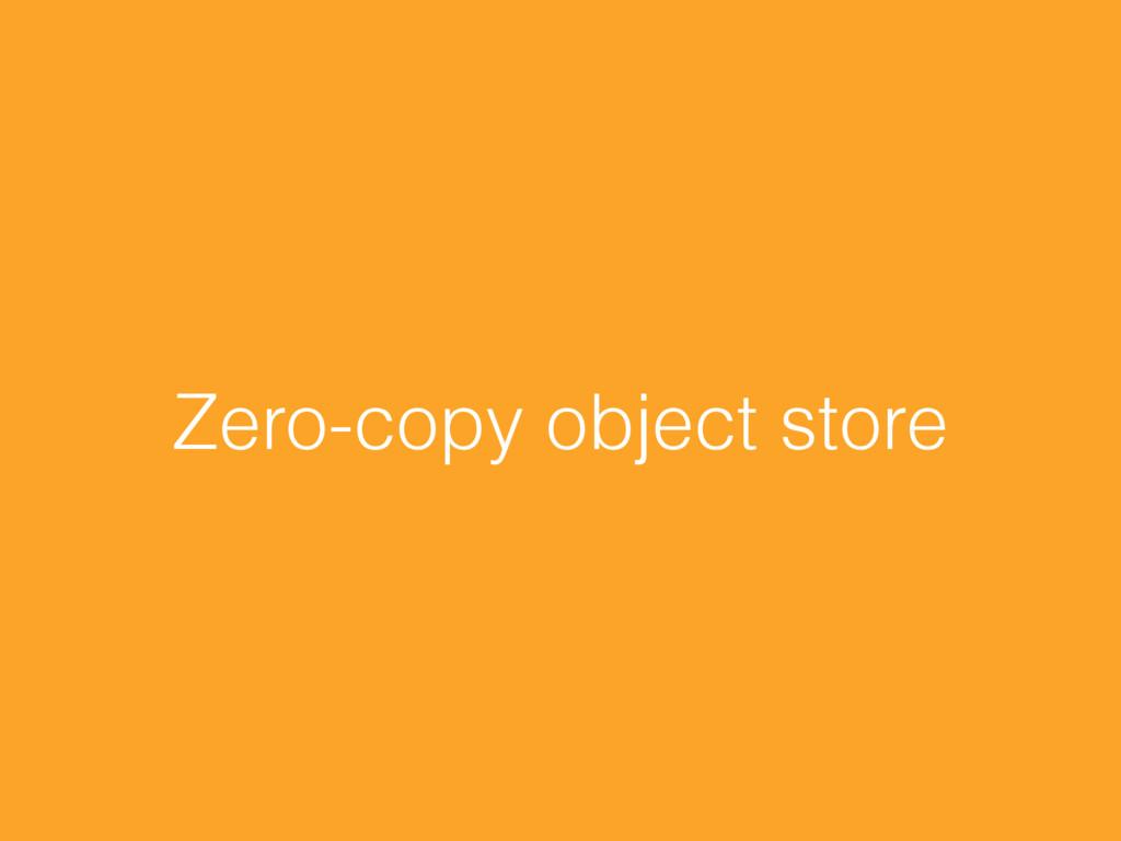Zero-copy object store