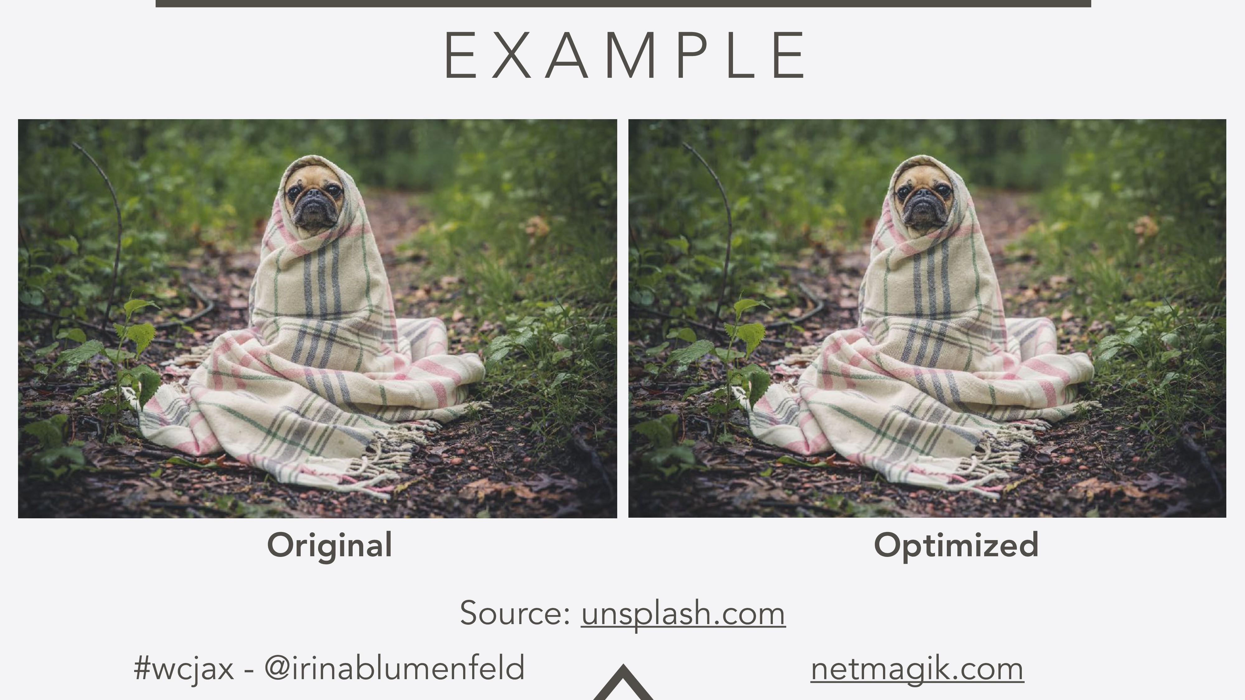 #wcjax - @irinablumenfeld netmagik.com E X A M ...