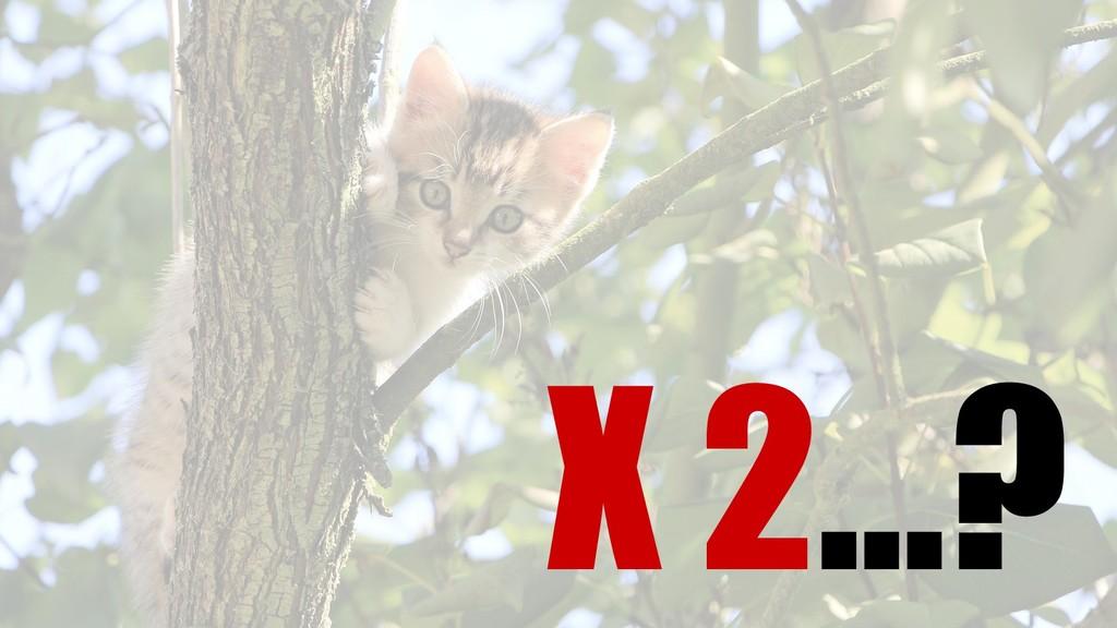 X 2…?
