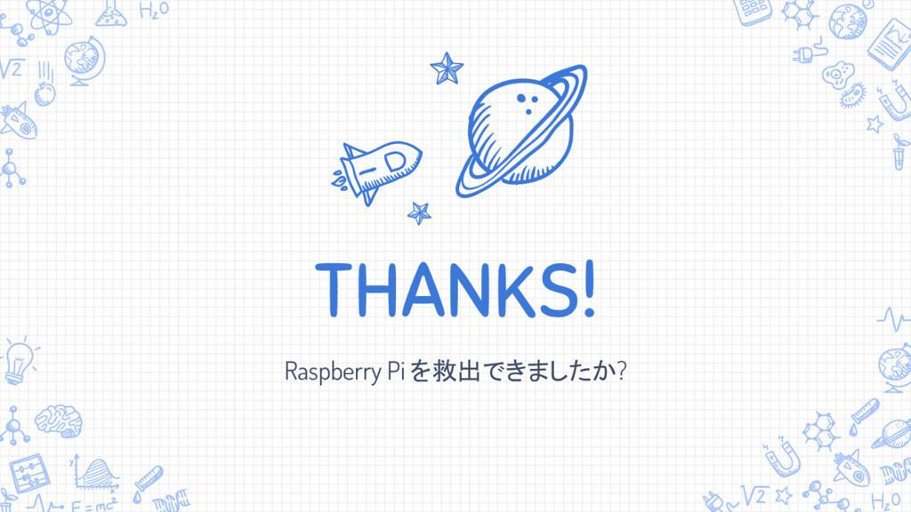 THANKS! Raspberry Pi を救出できましたか?