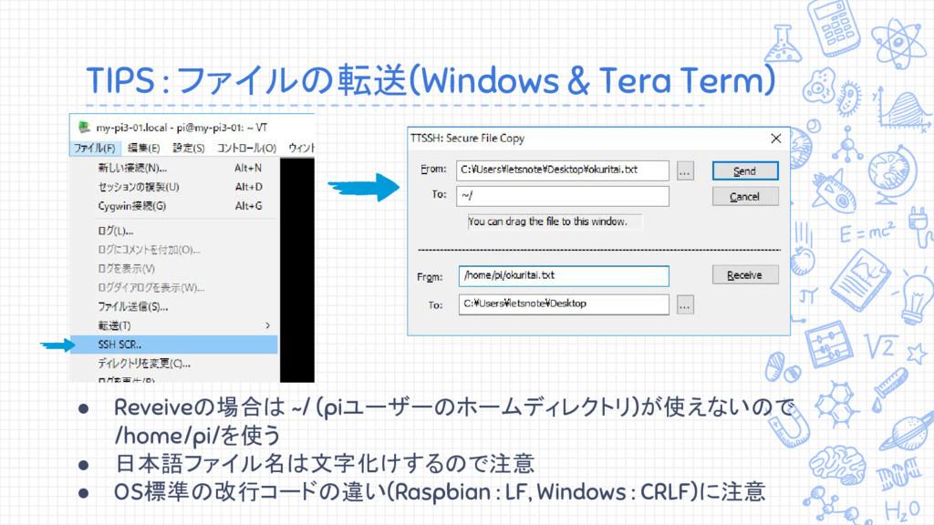 TIPS : ファイルの転送(Windows & Tera Term) ● Reveiveの場...