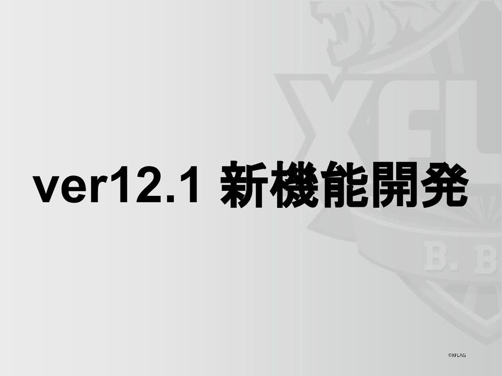 ver12.1 新機能開発