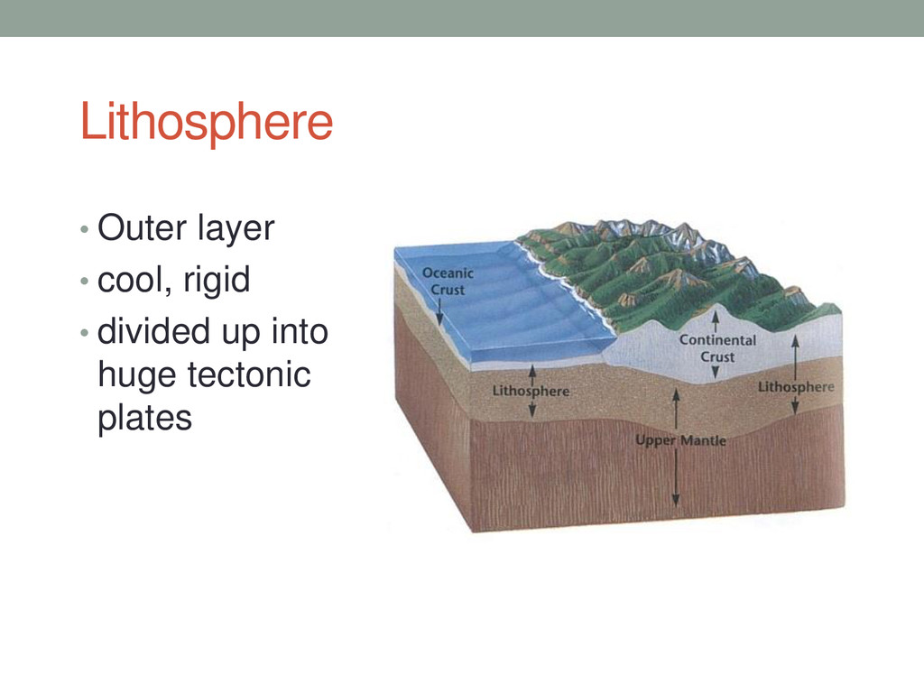 Lithosphere • Outer layer • cool, rigid • divid...