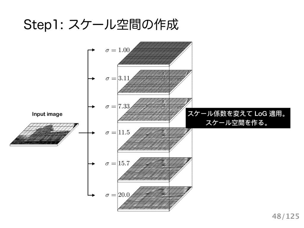 Input image = 1.00 = 20.0 = 15.7 = 3.11 = 7.33 ...
