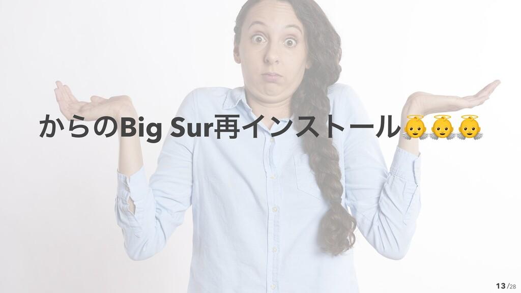 /28 13 ͔ΒͷBig Sur࠶Πϯετʔϧ