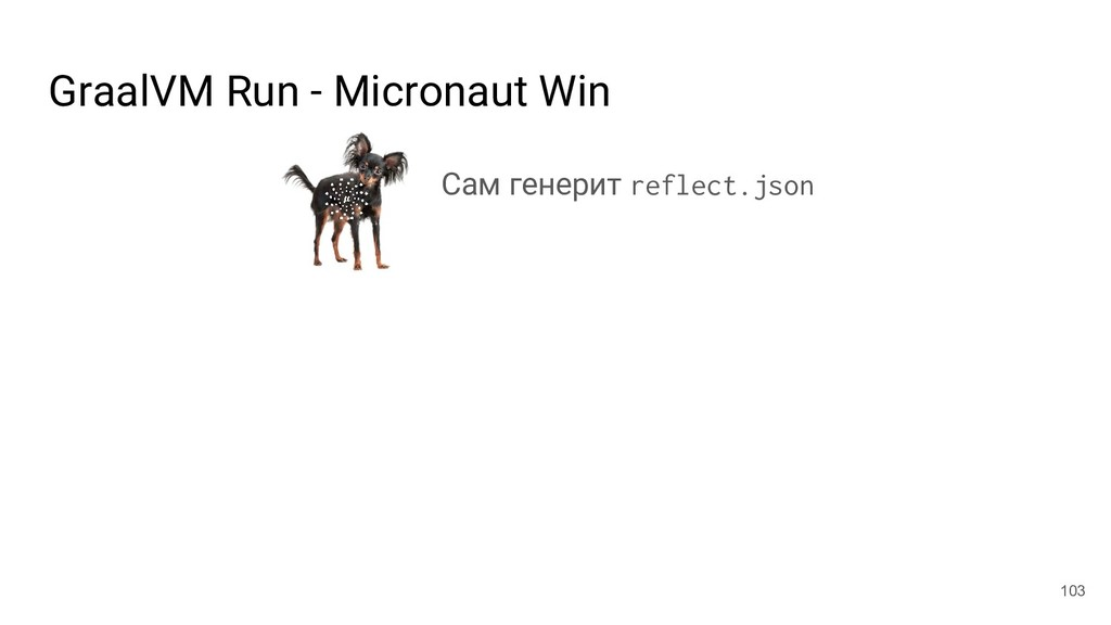 GraalVM Run - Micronaut Win 103 Сам генерит ref...