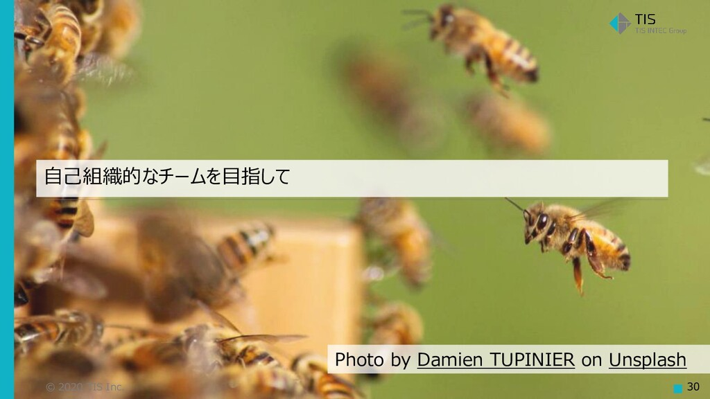 © 2020 TIS Inc. 30 自己組織的なチームを目指して Photo by Dami...