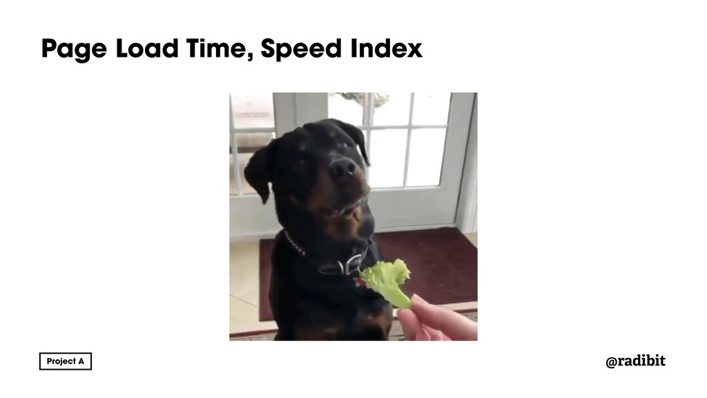 @radibit Page Load Time, Speed Index