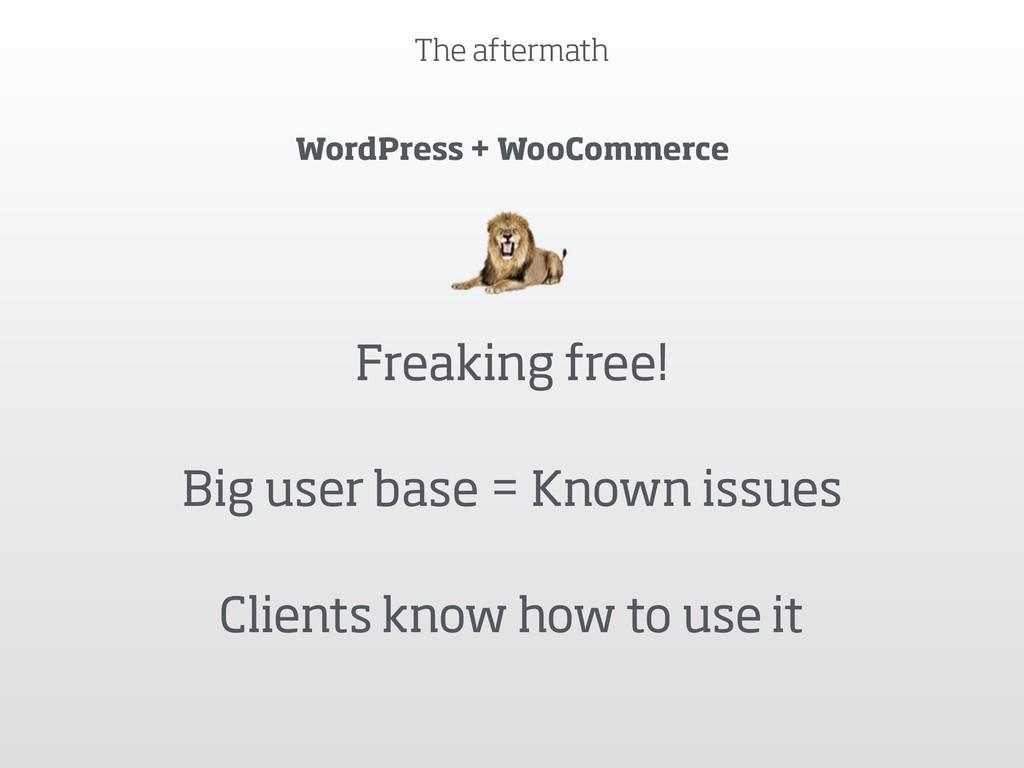 The aftermath WordPress + WooCommerce Freaking ...
