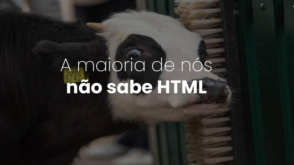A maioria de nós não sabe HTML