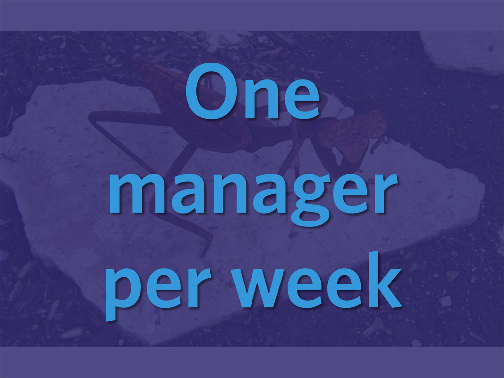 One manager per week