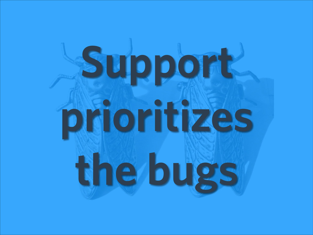 Support prioritizes the bugs