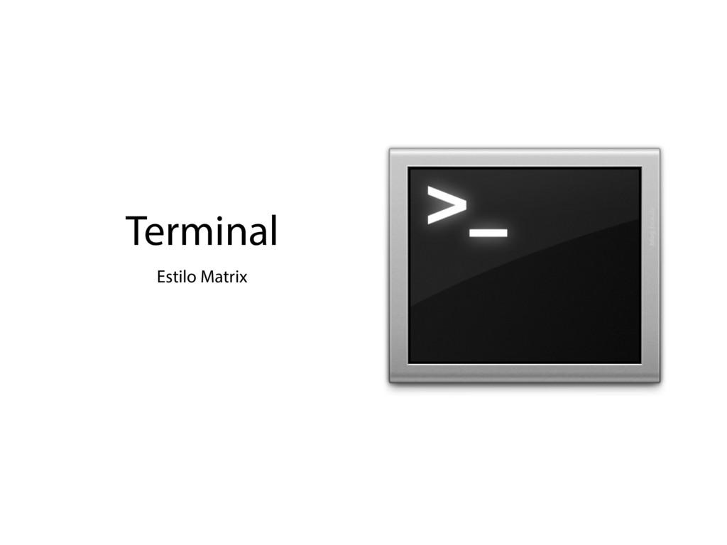 Terminal Estilo Matrix