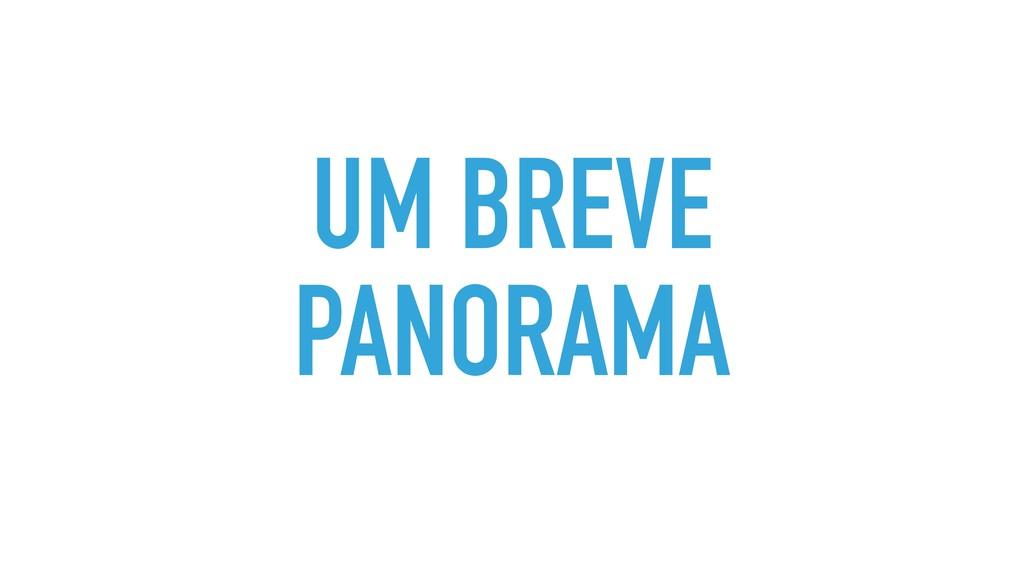UM BREVE PANORAMA