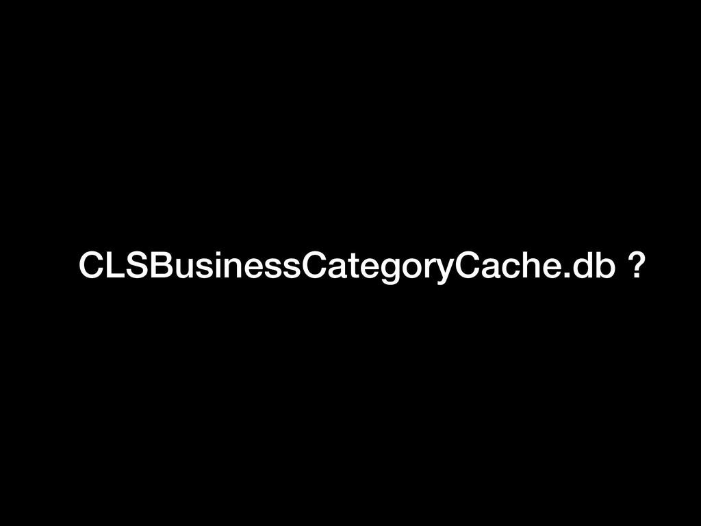 CLSBusinessCategoryCache.db ?