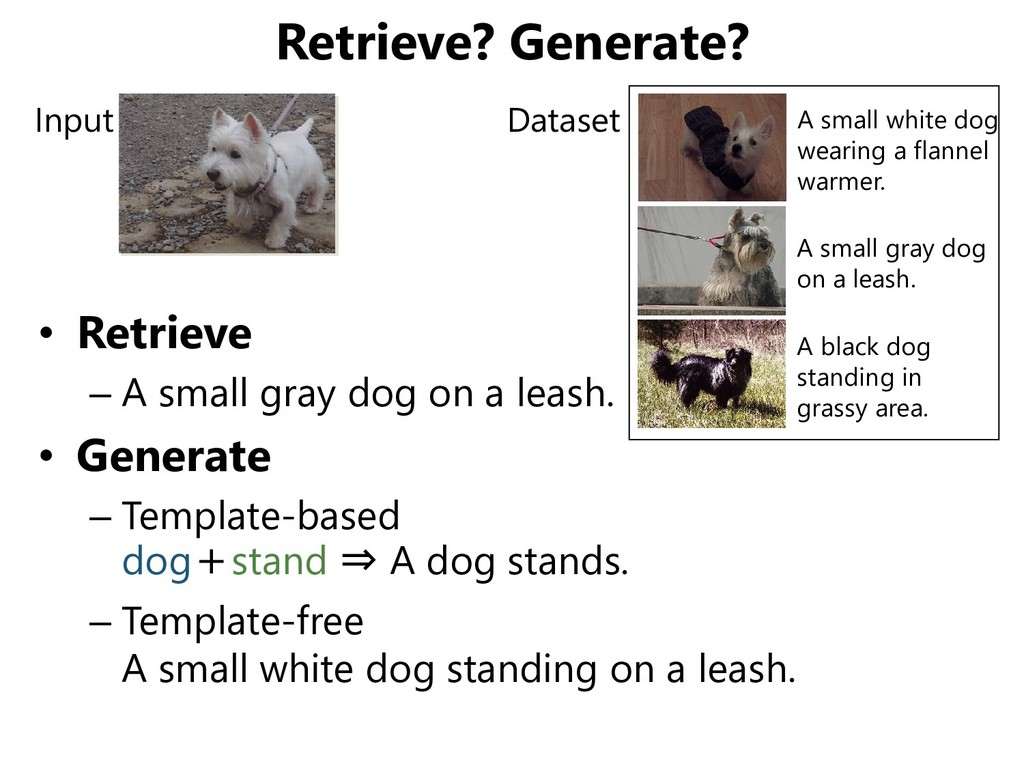 Retrieve? Generate? • Retrieve – A small gray d...