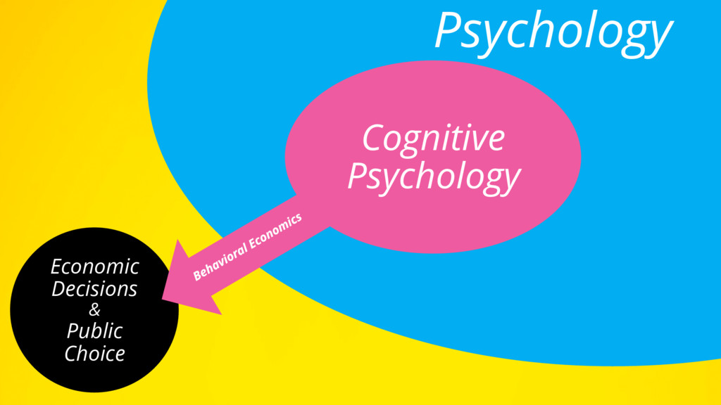 Economic Decisions & Public Choice Psychology C...