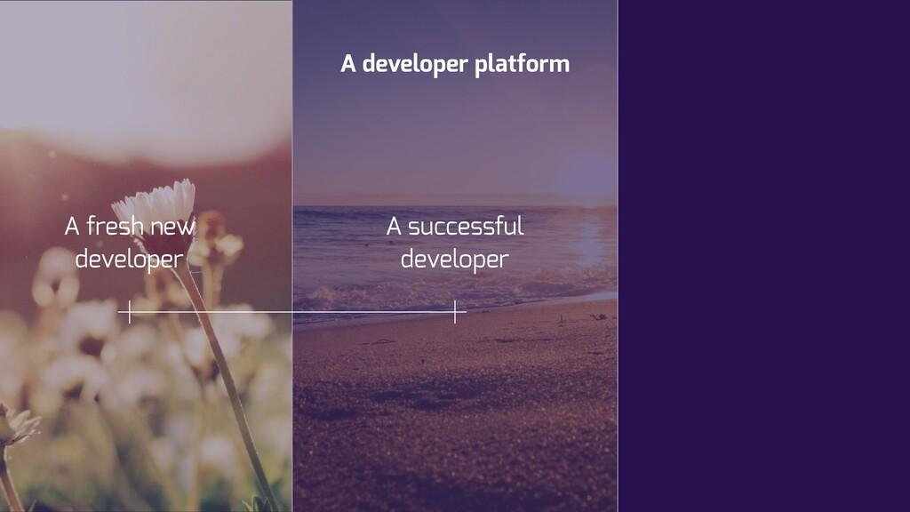A developer platform A successful developer A f...