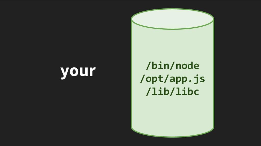 your /bin/node /opt/app.js /lib/libc