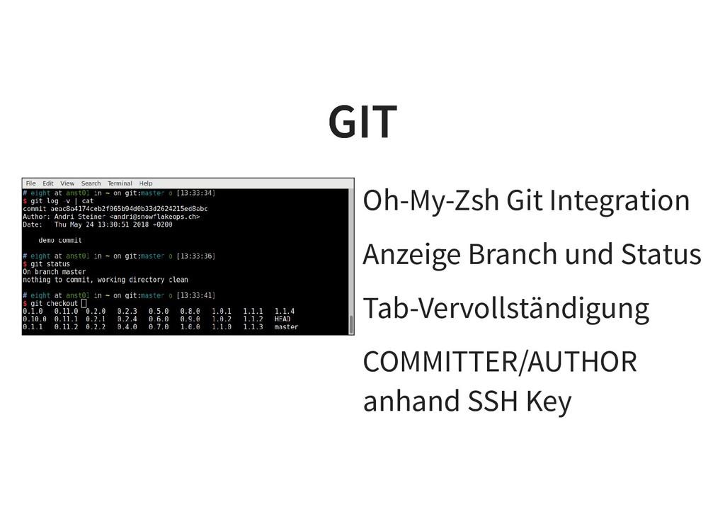Oh-My-Zsh Git Integration Anzeige Branch und St...