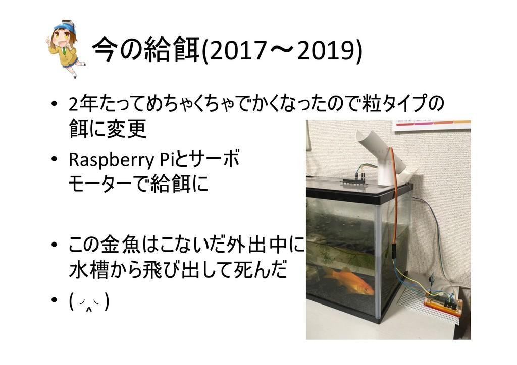 今の給餌(2017〜2019) • 2年たってめちゃくちゃでかくなったので粒タイプの 餌に変更...