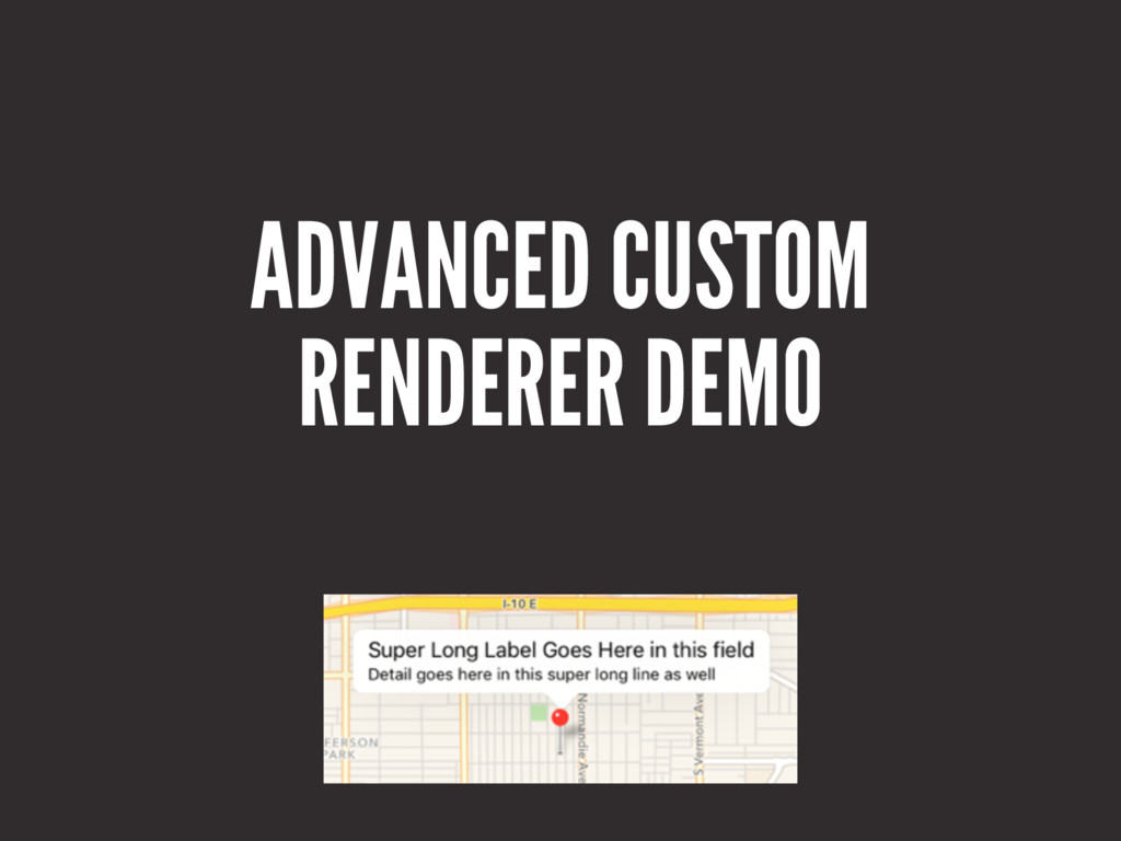 ADVANCED CUSTOM RENDERER DEMO