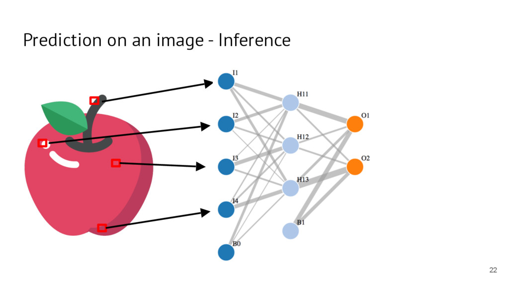 Prediction on an image - Inference 22