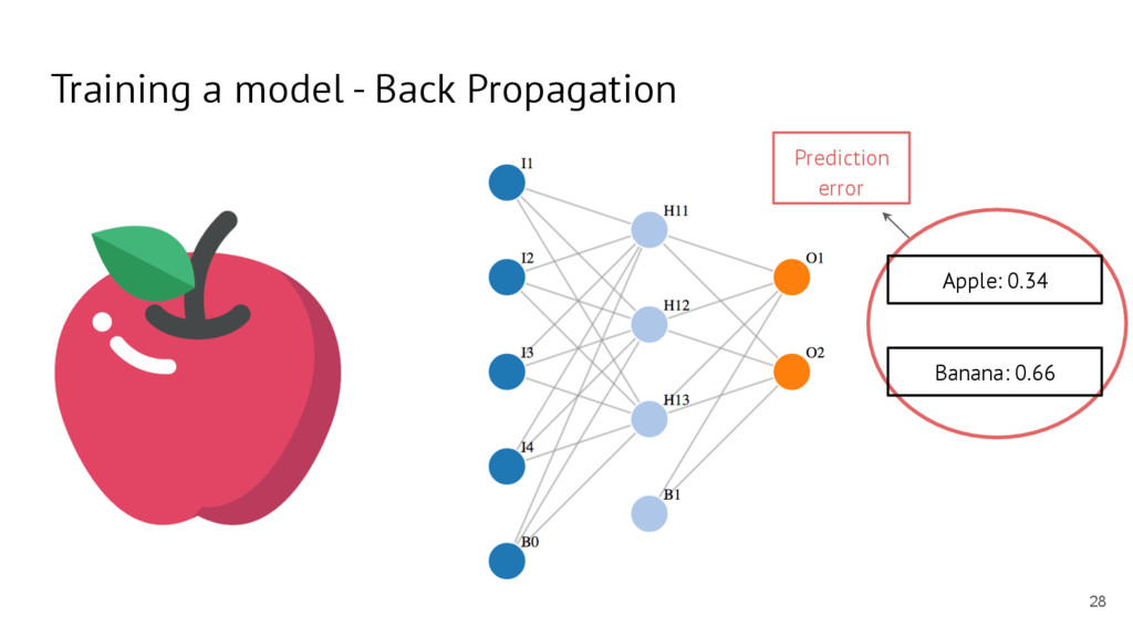 Training a model - Back Propagation Apple: 0.34...