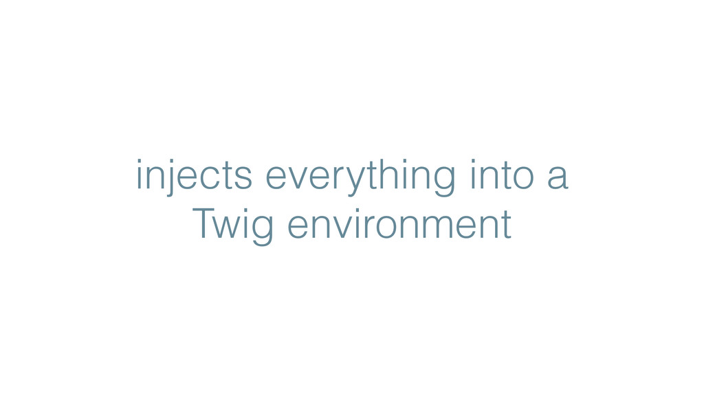 injects everything into a Twig environment