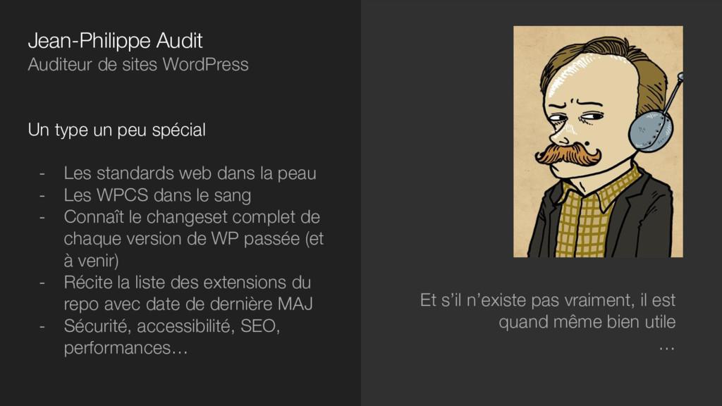 Jean-Philippe Audit Auditeur de sites WordPress...