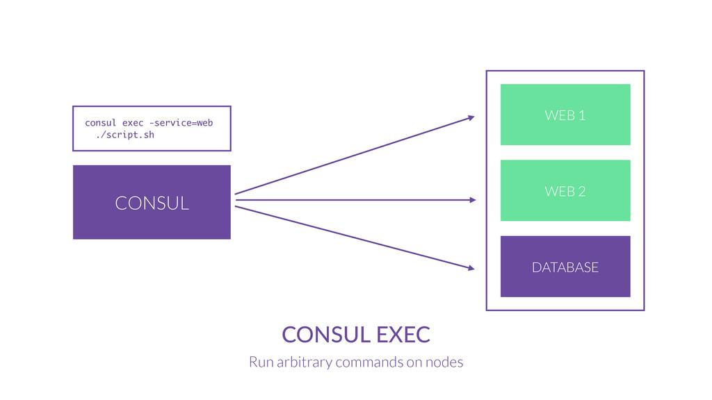 CONSUL CONSUL EXEC Run arbitrary commands on no...