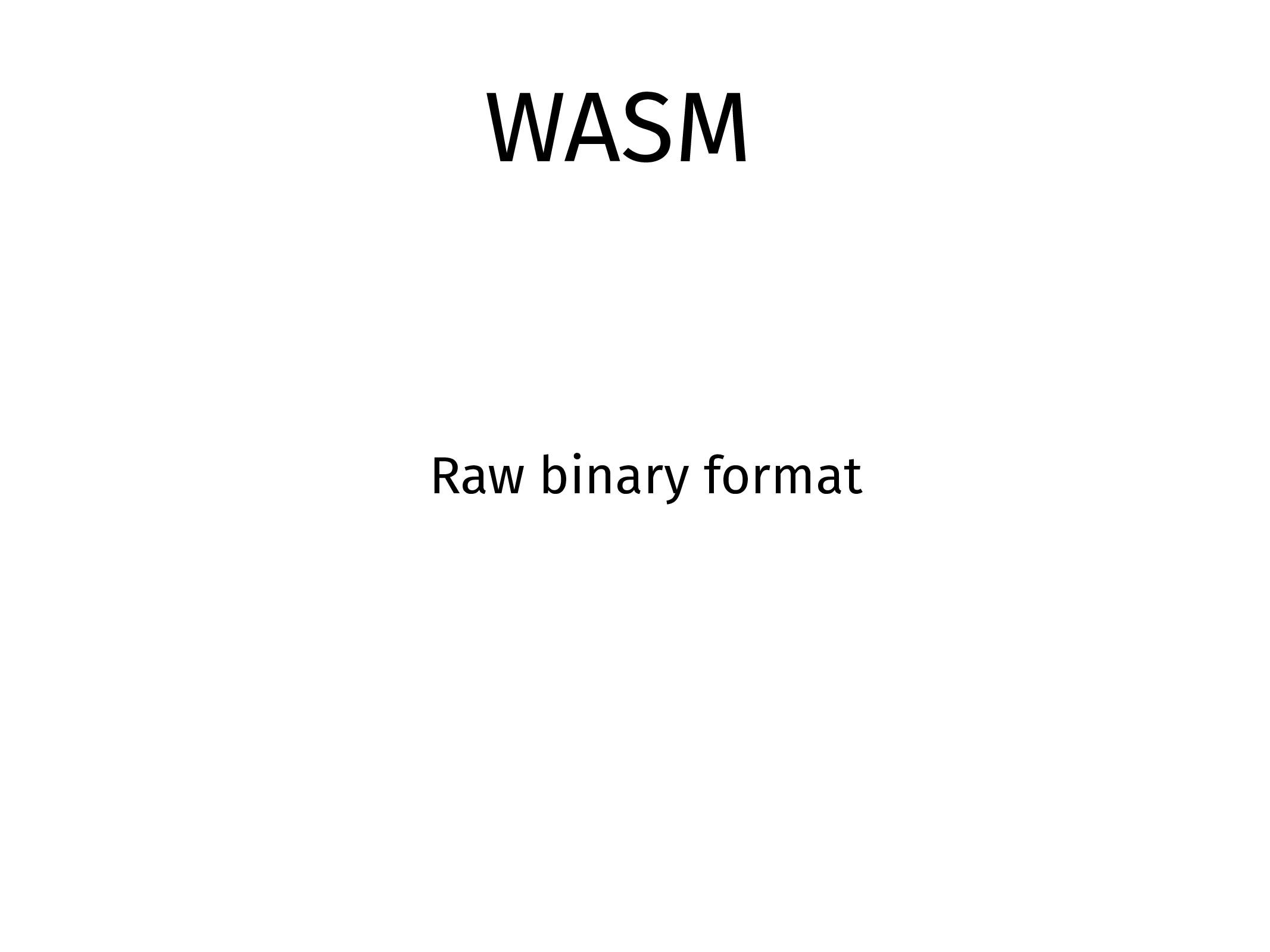 WASM Raw binary format