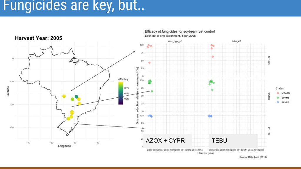 Fungicides are key, but.. AZOX + CYPR TEBU