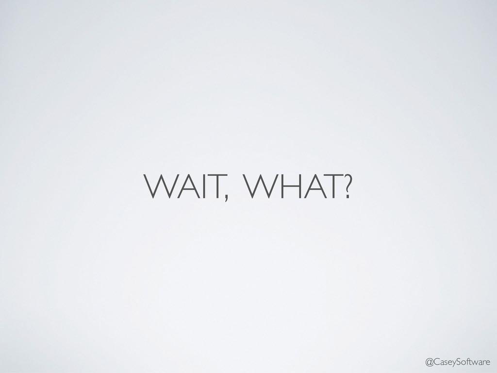WAIT, WHAT? @CaseySoftware