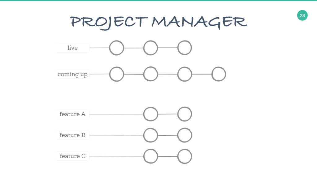 28 PROJECT MANAGER