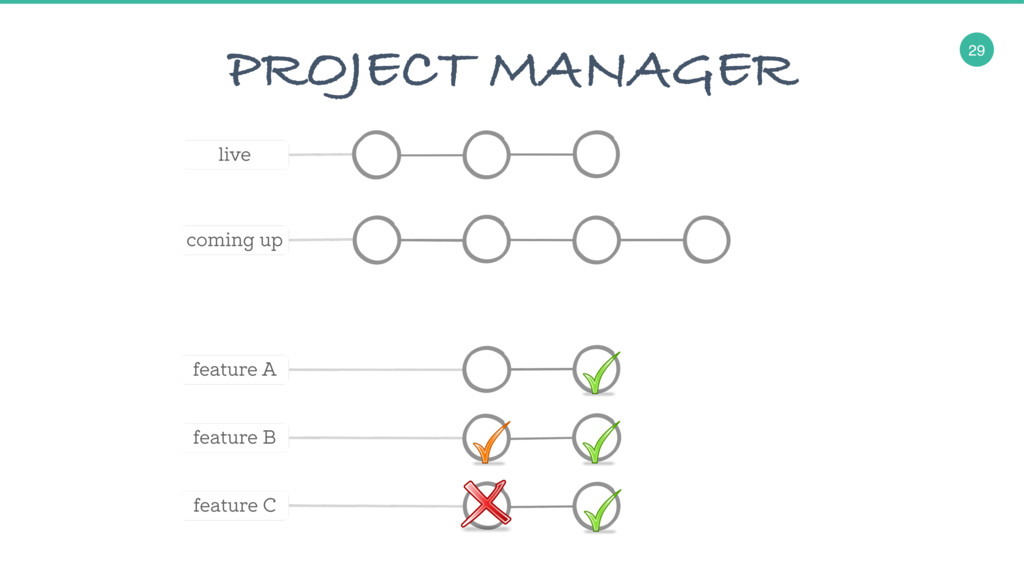 29 PROJECT MANAGER