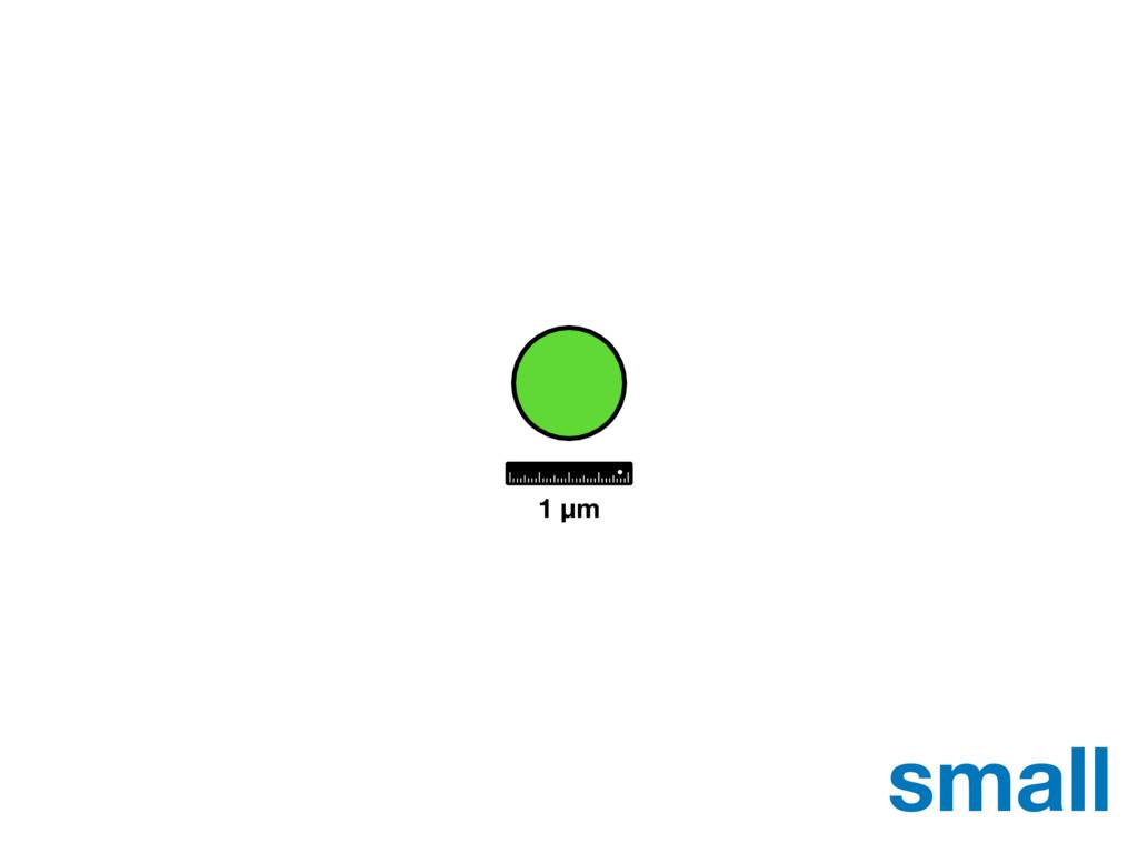 small 1 μm