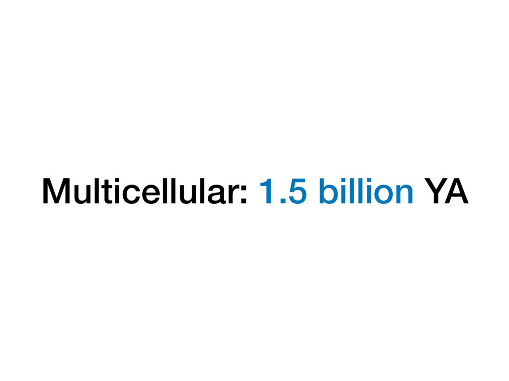 Multicellular: 1.5 billion YA