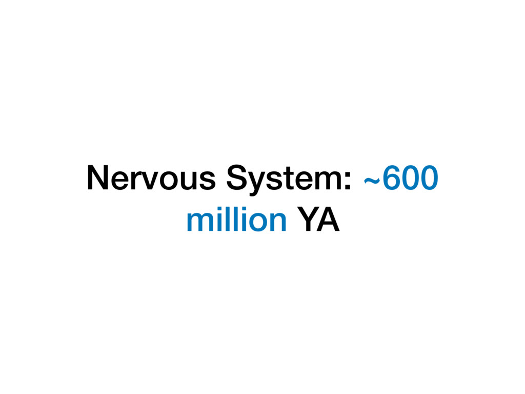 Nervous System: ~600 million YA