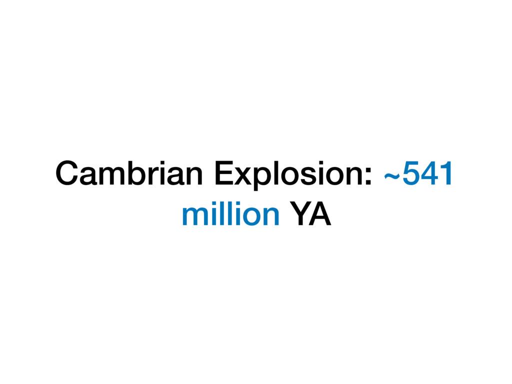 Cambrian Explosion: ~541 million YA