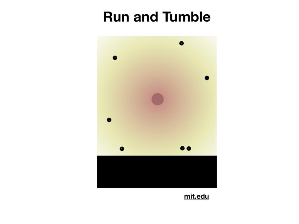 Run and Tumble mit.edu