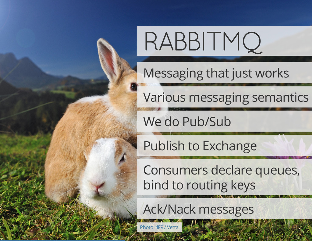 RABBITMQ Messaging that just works Various mess...