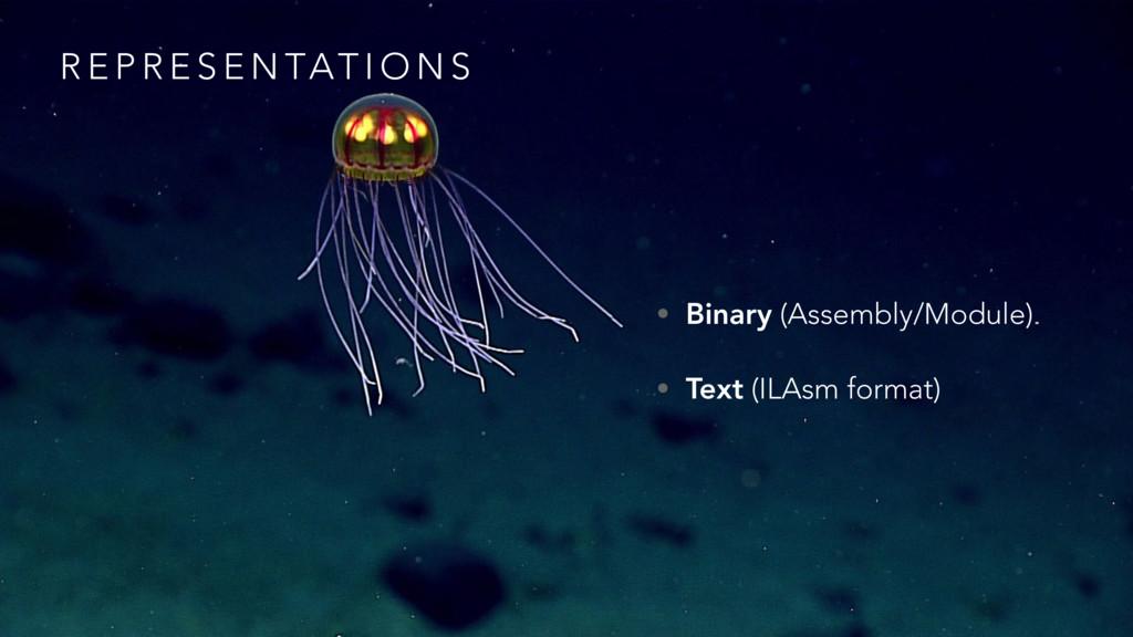 R E P R E S E N TAT I O N S • Binary (Assembly/...