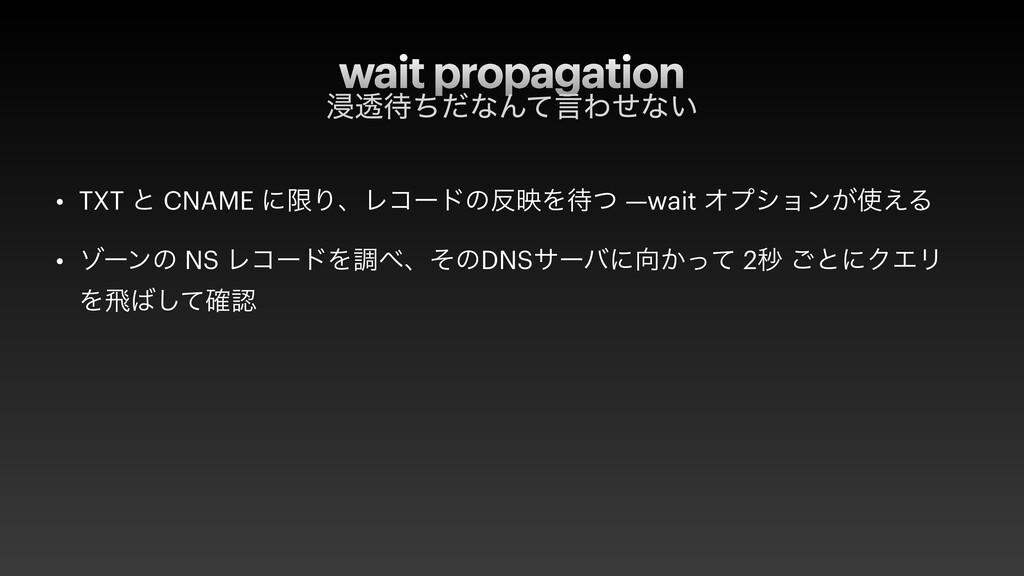 wait propagation ਁಁͪͩͳΜͯݴΘͤͳ͍ • TXT ͱ CNAME ʹݶ...