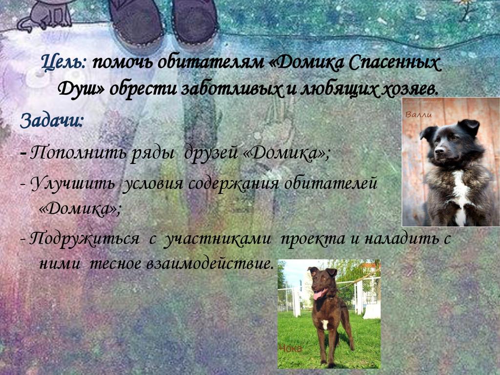Цель: помочь обитателям «Домика Спасенных Душ» ...