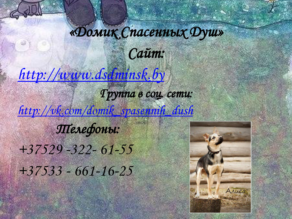 «Домик Спасенных Душ» Сайт: http://www.dsdminsk...