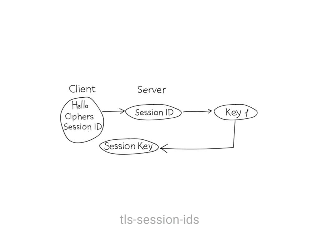 tls-session-ids
