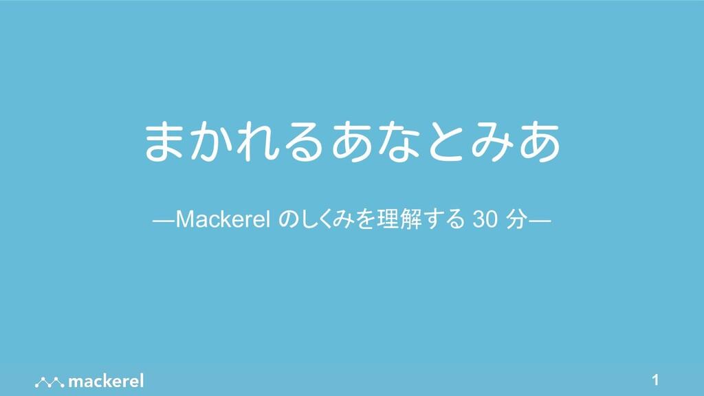 1 まかれるあなとみあ ―Mackerel のしくみを理解する 30 分―