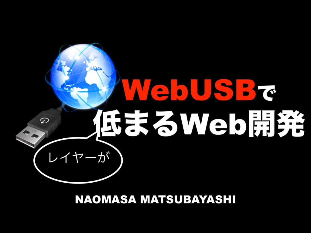 WebUSBͰ ·ΔWeb։ൃ ϨΠϠʔ͕ NAOMASA MATSUBAYASHI