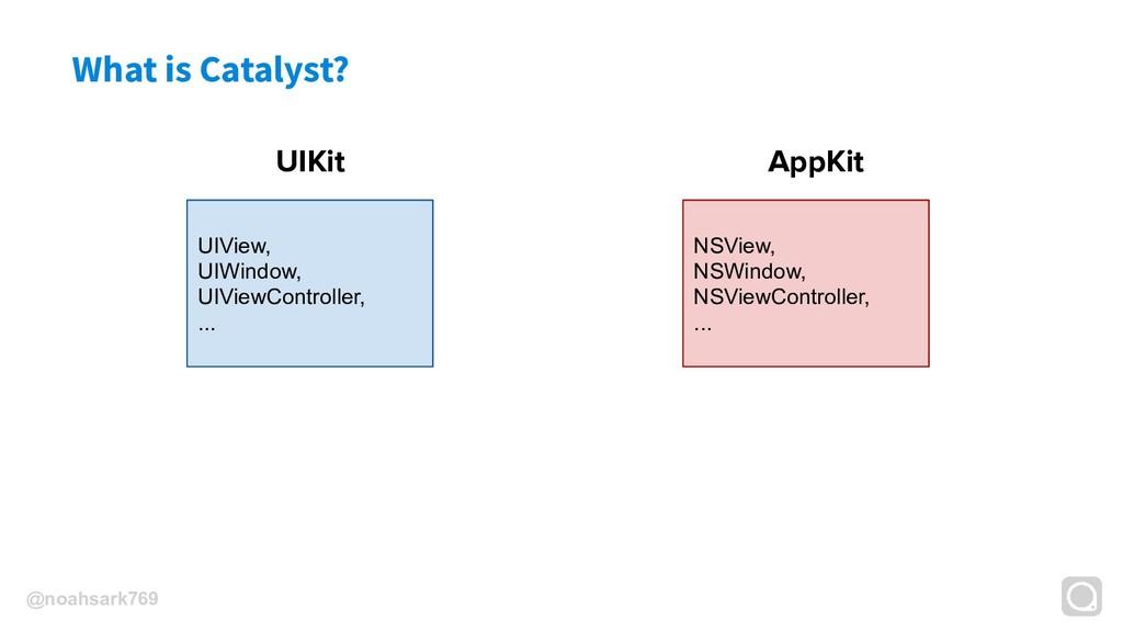 @noahsark769 What is Catalyst? UIKit UIView, UI...